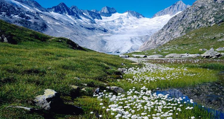سويسرا & فرنسا